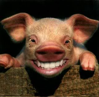 pig_smiling.jpg?w=510